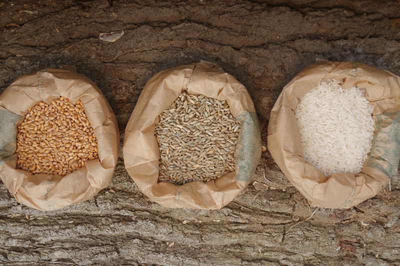 Getreide und Reis